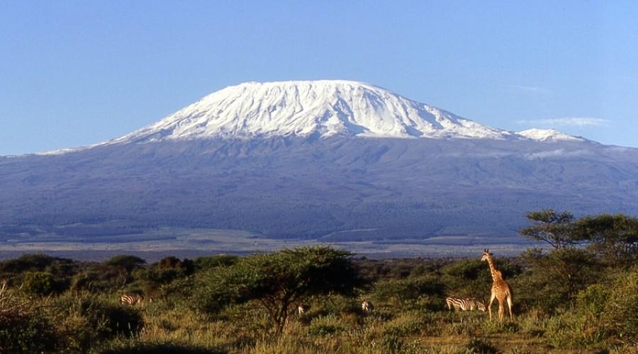 Mt. Kilimanjaro Conquered!